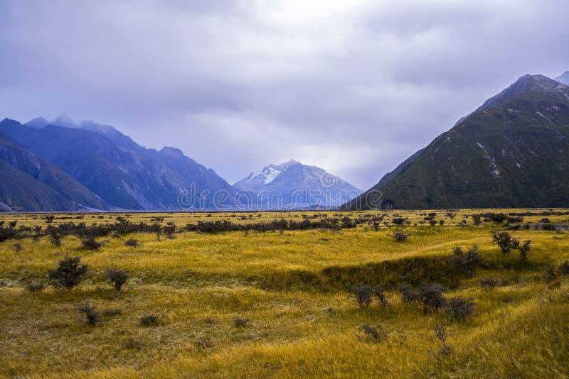 Monte vales de Tasman, cume do sul de parque nacional do cozinheiro de Aoraki Mt fotos de stock