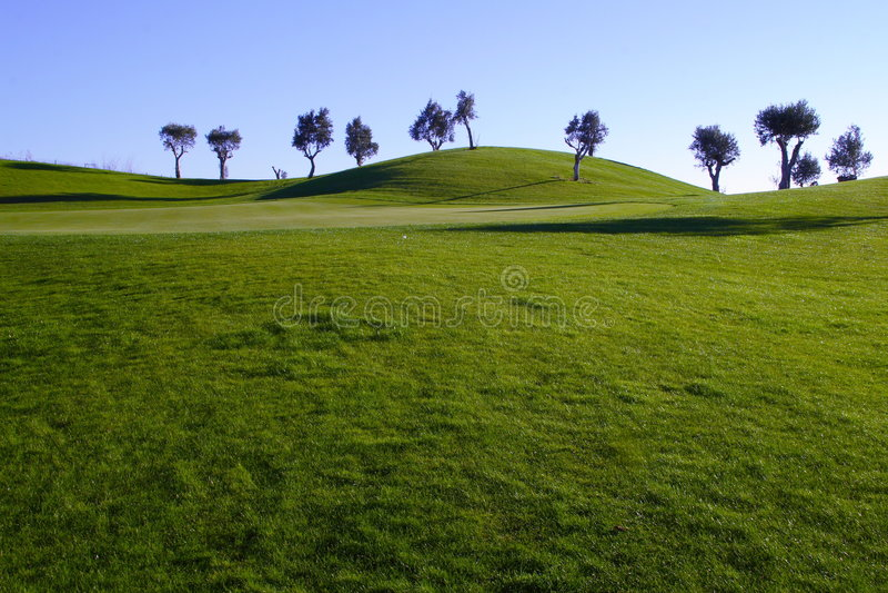 Monte verde foto de stock