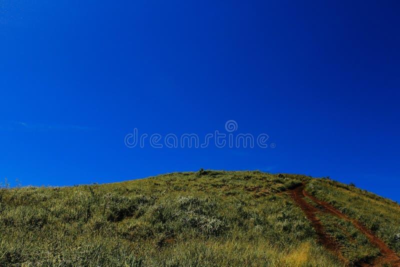 Monte verde azul foto de stock