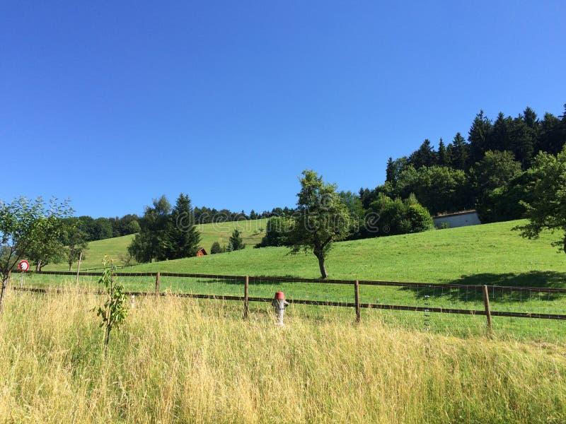 Monte verde e céu azul fotografia de stock royalty free