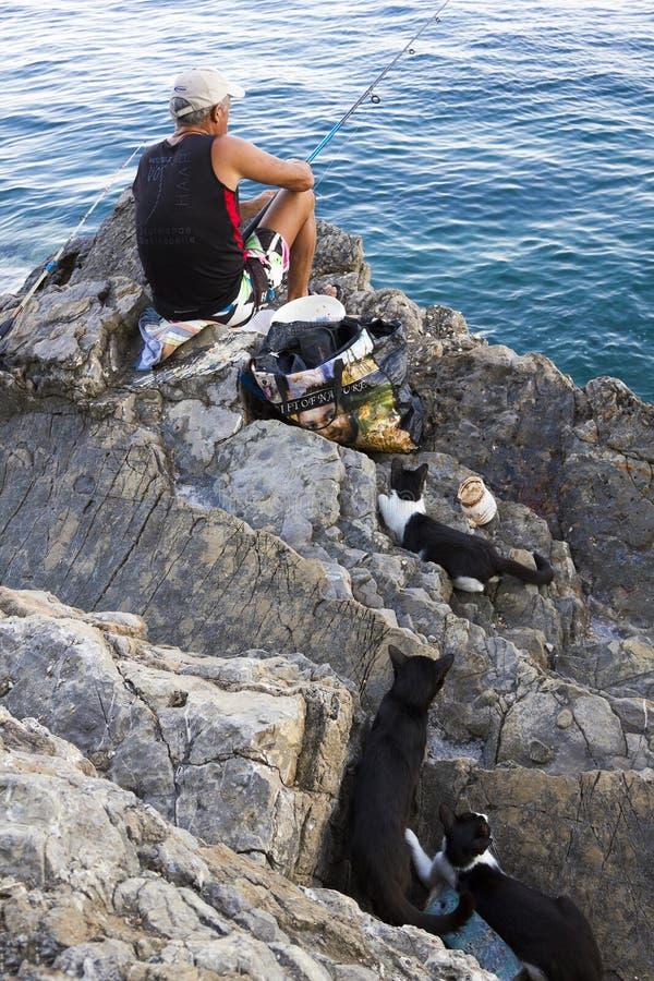 Montenegro, Budva - 14 de julho de 2018: Pesca do pescador no mar na costa de pedra, e três gatos que esperam para travar imagem de stock royalty free