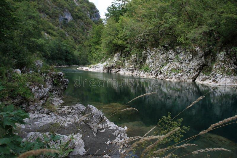 Montenegro, Durmitor fotos de stock royalty free