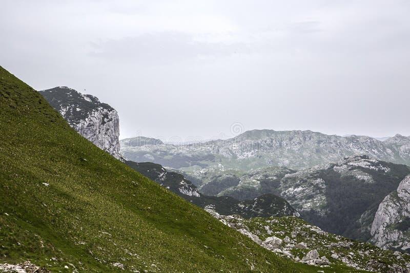 Montenegro. Durmitor National Park. stock photography