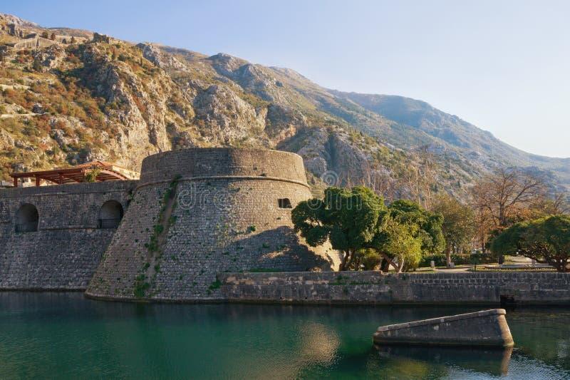 montenegro Festung der alten Stadt von Kotor Ansicht von Kampana Towe lizenzfreie stockfotografie
