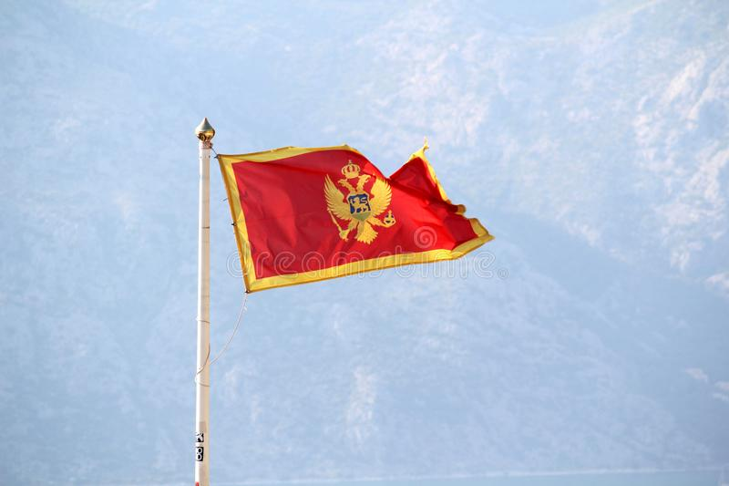 Montenegro flagga i den Kotor citadellen, Montenegro royaltyfri fotografi
