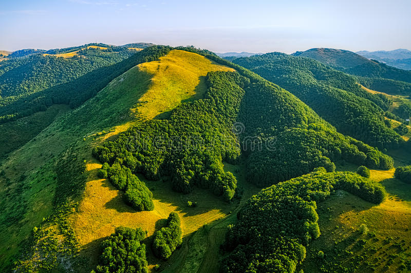 Montenegro forest - aerial royalty free stock photo