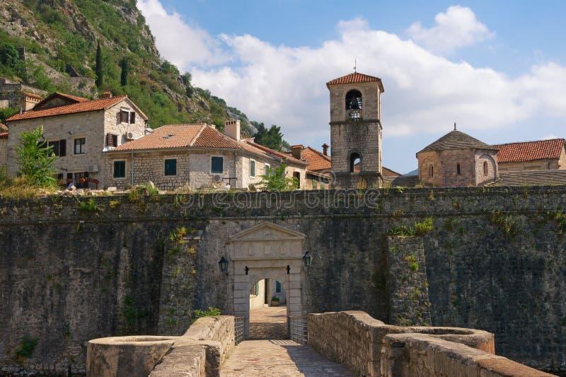 Montenegro gammal town för kotor Sikt av nordliga väggar av den forntida fästningen, flodporten och kyrkan av St Mary royaltyfria foton