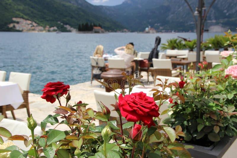 Montenegro Perast royaltyfria foton