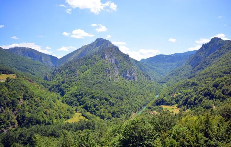 Montenegro, rzeczny jar, krajowy naturalny park obraz royalty free