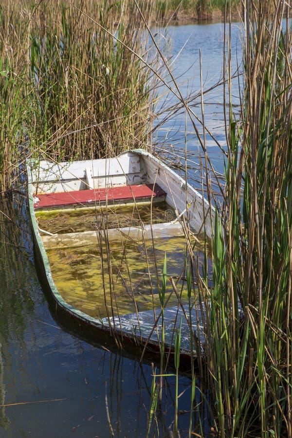 Fishing  boat at lago di Montepulciano. nature reserve. Tuscany. Italy. Montepulciano, Italy. 04-19-2019. Fishing  boat at lago di Montepulciano. nature reserve stock images