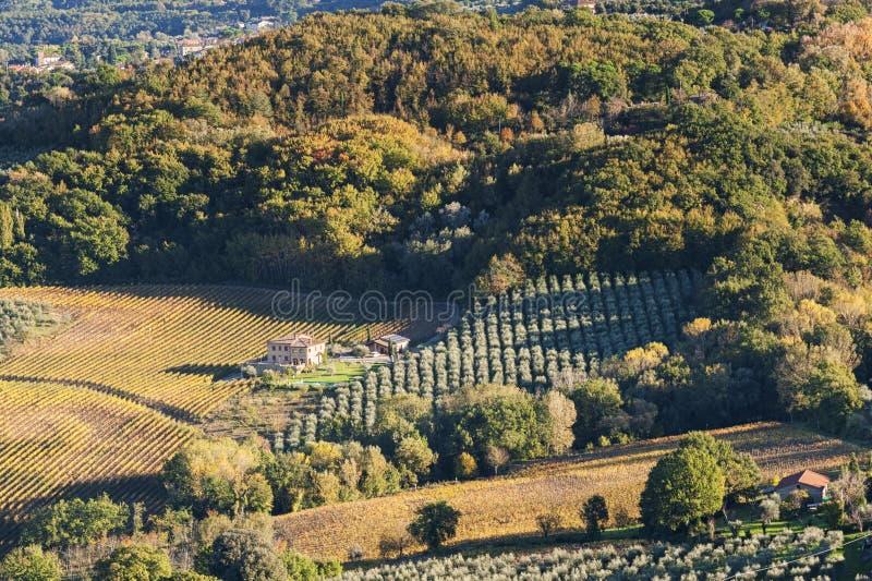 MONTEPULCIANO - TUSCANY/ITALY, 29 OKTOBER, 2016: Een idyllische landschaps grote mening over Montepulciano-platteland, zoals die  stock foto