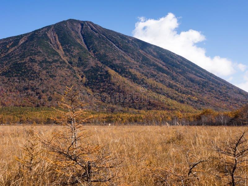 Montera Nantai, vulkan i den Nikko nationalparken, Japan arkivfoto