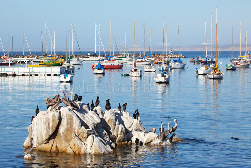 Monterey royalty-vrije stock fotografie