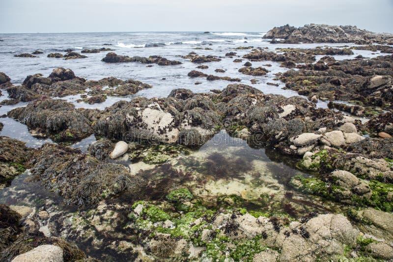Monterey-Bucht-Küstenlandschaft stockfoto