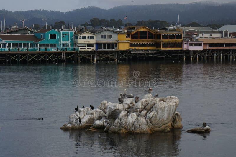 Monterey Fishermans fotografia stock libera da diritti