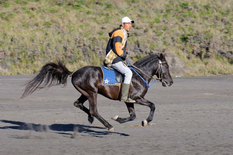 MONTERING BROMO, JAVA INDONESIEN - JUNI 28, 2014: Överförande turister för odefinierad hästryttare runt om vulkan royaltyfri foto