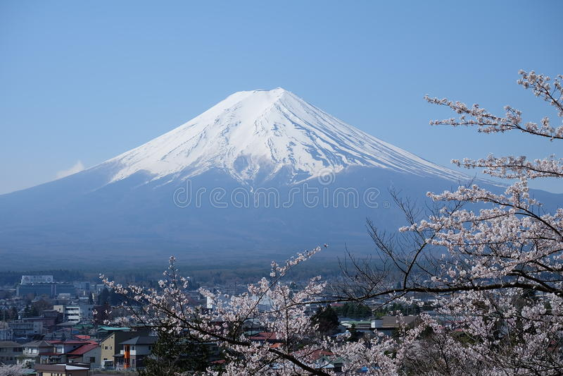 montering Fuji Fuji san royaltyfria foton