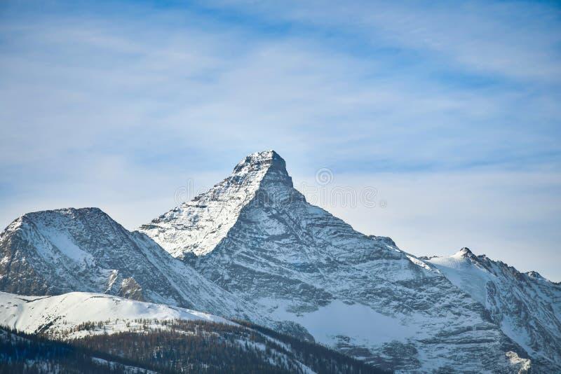 Montering Nelson i vinter, British Columbia Kanada royaltyfria foton
