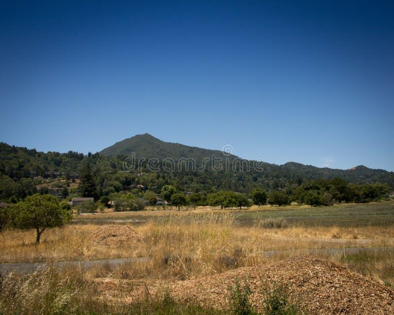 Montering Tamalpais, Marin County, CA arkivfoton