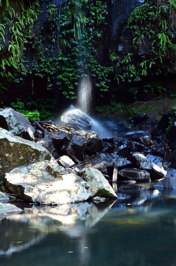 Montering Tamborine Gold Coast Queensland Australien royaltyfri foto