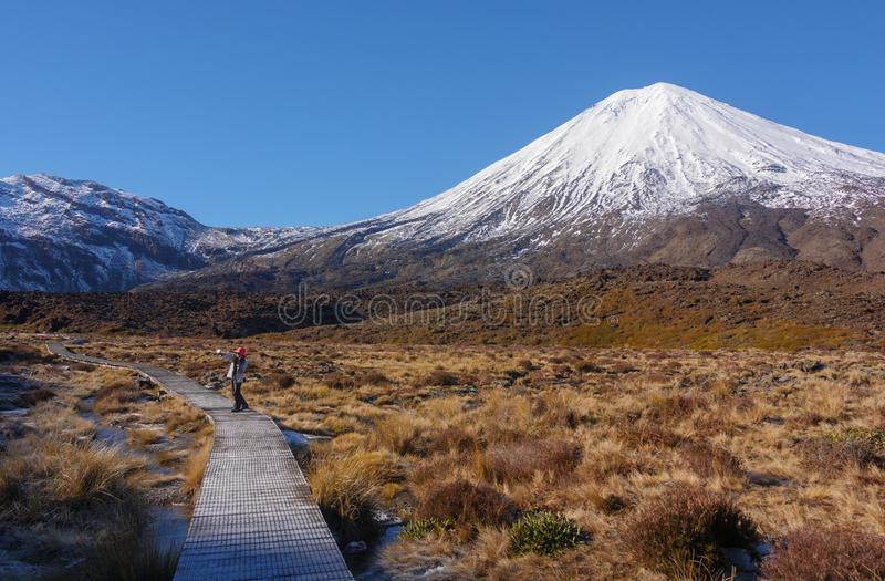 Montering Taranaki, montering Egmont nationalpark, Nya Zeeland royaltyfri foto