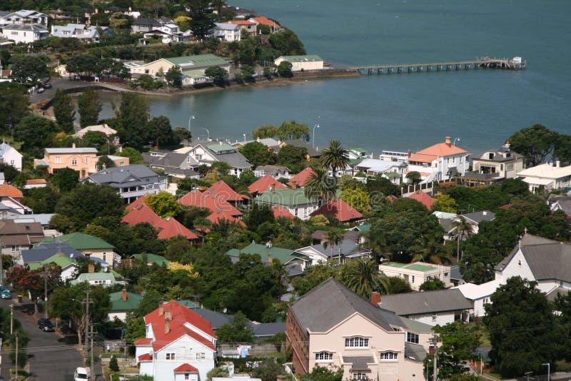 Montering Victoria, Nya Zeeland royaltyfria bilder