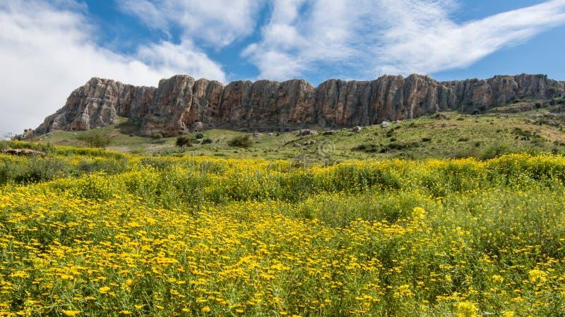 MonteringsArbel klippor, Arbel nationalpark, Jesus Trail, Israel arkivfoto