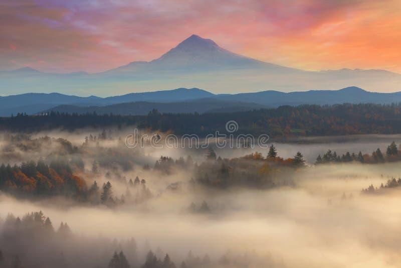 Monteringshuv över dimmiga Sandy River Valley Sunrise arkivfoton