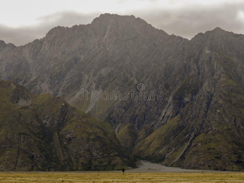 Monteringskocken National Park är en verklig ädelsten royaltyfri foto