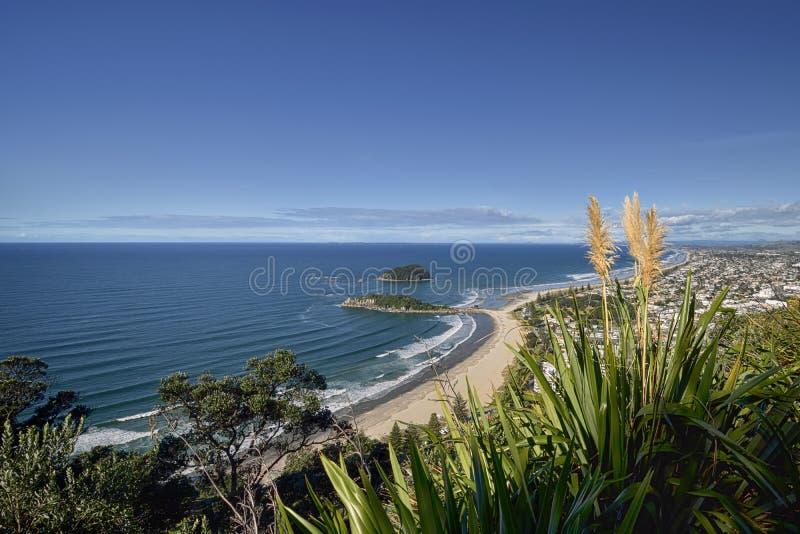 MonteringsMaunganui strand som är nyazeeländsk arkivbilder