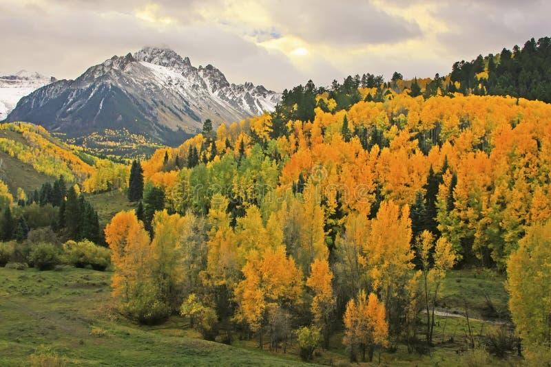 MonteringsSneffels område, Colorado royaltyfria bilder