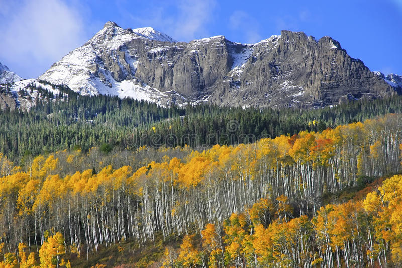 MonteringsSneffels område, Colorado royaltyfri fotografi
