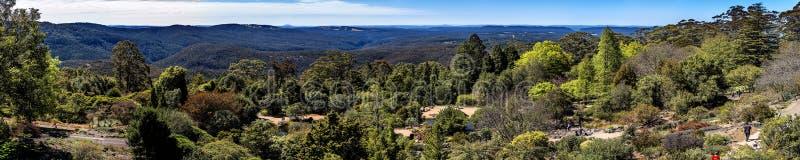 MonteringsTomah botaniska trädgårdar, NSW arkivfoto