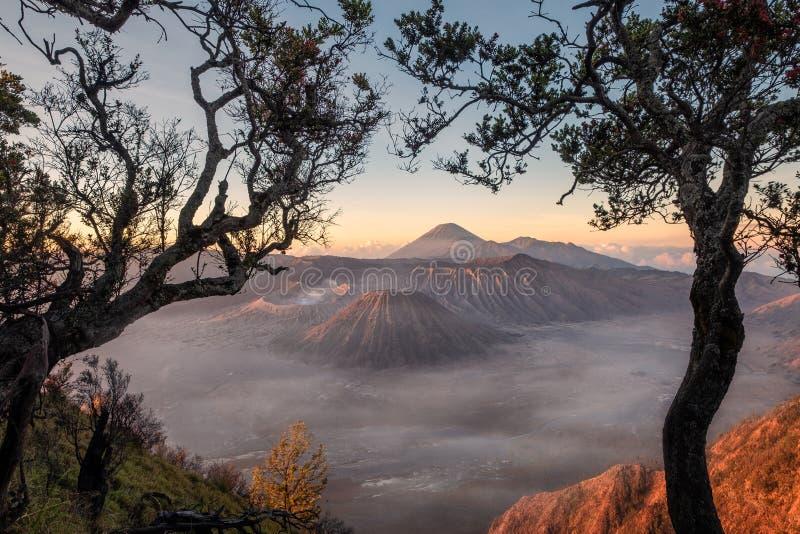 Monteringsvulkan en aktiv med trädramen på soluppgång royaltyfria bilder