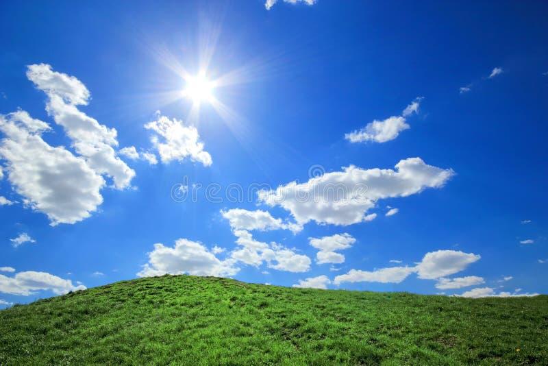 Montes da grama verde sob o sol do meio-dia imagem de stock royalty free