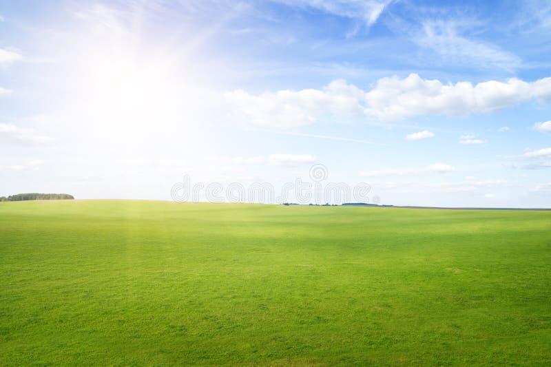 Montes da grama verde sob o sol do meio-dia no céu azul. imagens de stock royalty free