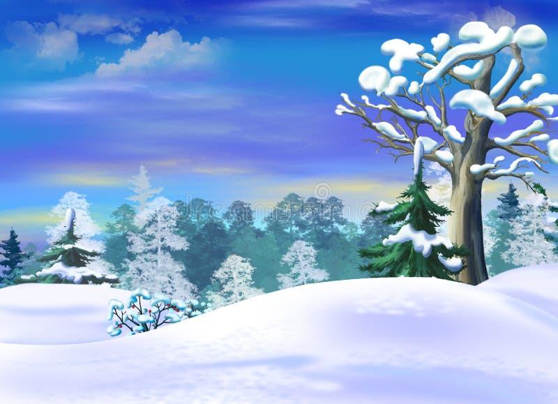 Montes de neve em um inverno Forest Clearing ilustração do vetor