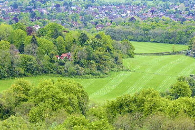 Montes de Surrey, Inglaterra foto de stock royalty free