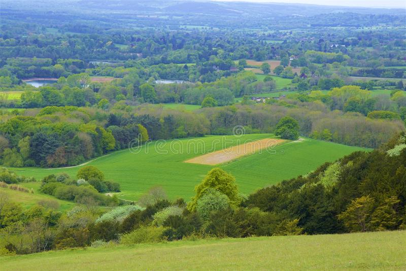 Montes de Surrey, Inglaterra fotos de stock