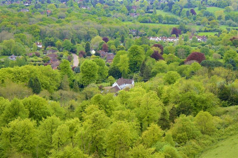 Montes de Surrey, Inglaterra imagem de stock