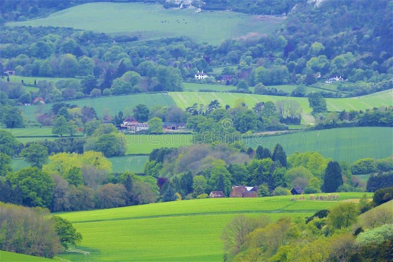 Montes de Surrey, Inglaterra fotos de stock royalty free