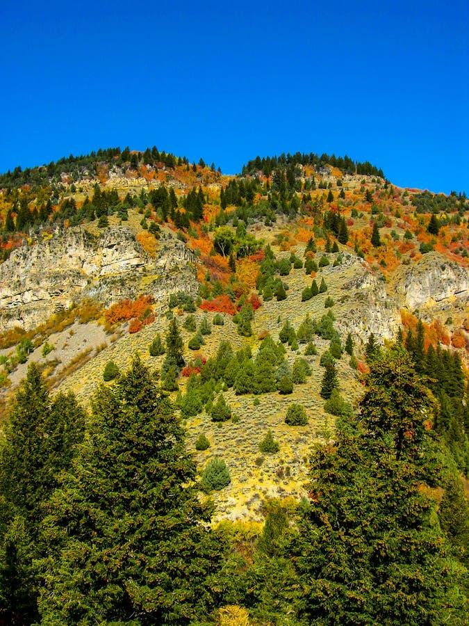 Montes de Teton no outono imagens de stock