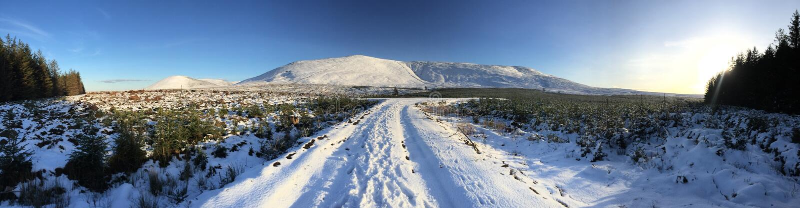 Montes do inverno fotos de stock royalty free