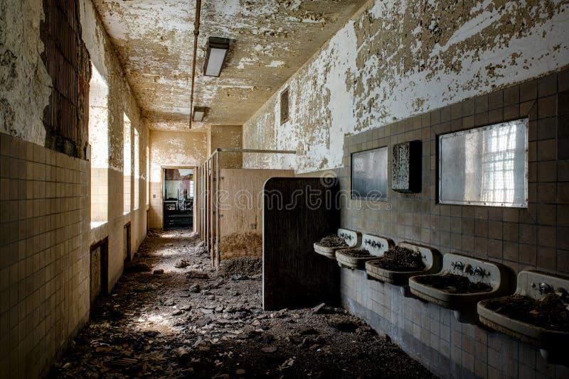 Montes do tombadilho dentro dos dissipadores do banheiro - hospital abandonado do pássaro foto de stock