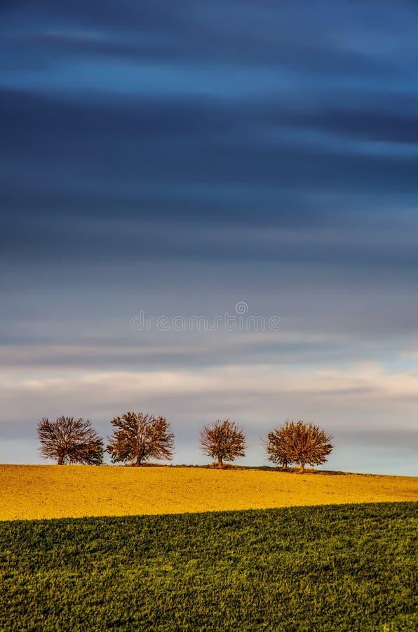 Montes e árvores fotografia de stock