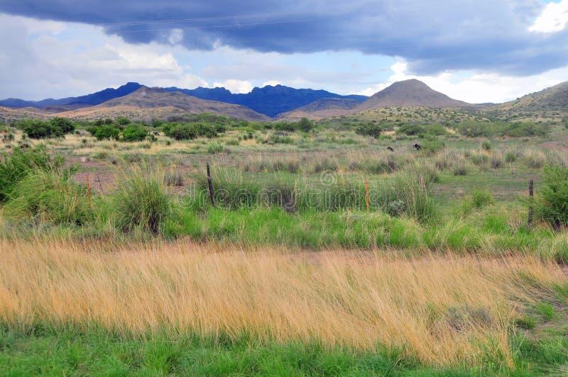 Montes e montanhas da beleza natural foto de stock royalty free