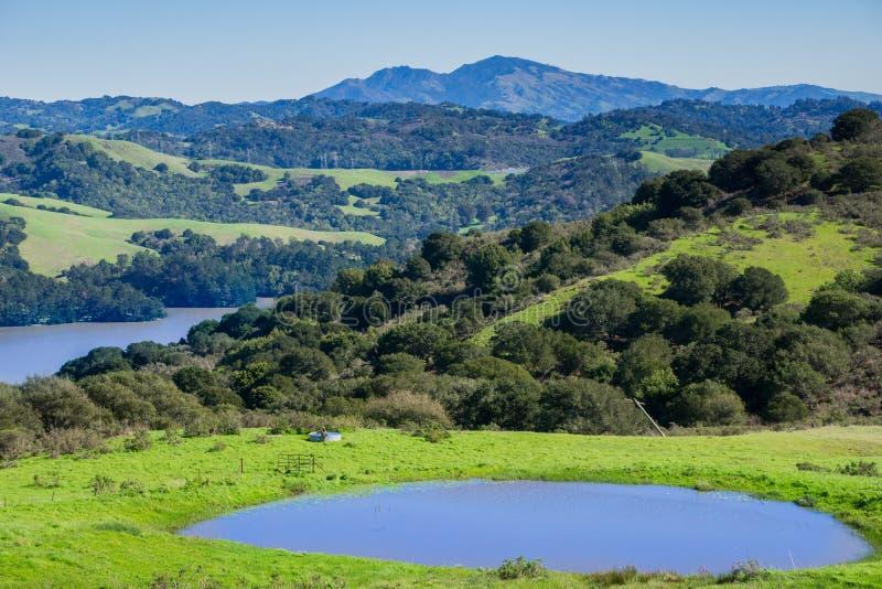 Montes e prados no parque regional da garganta desorganizada; San Pablo Reservoir; Montagem Diablo no fundo, San Francisco Bay do imagens de stock royalty free