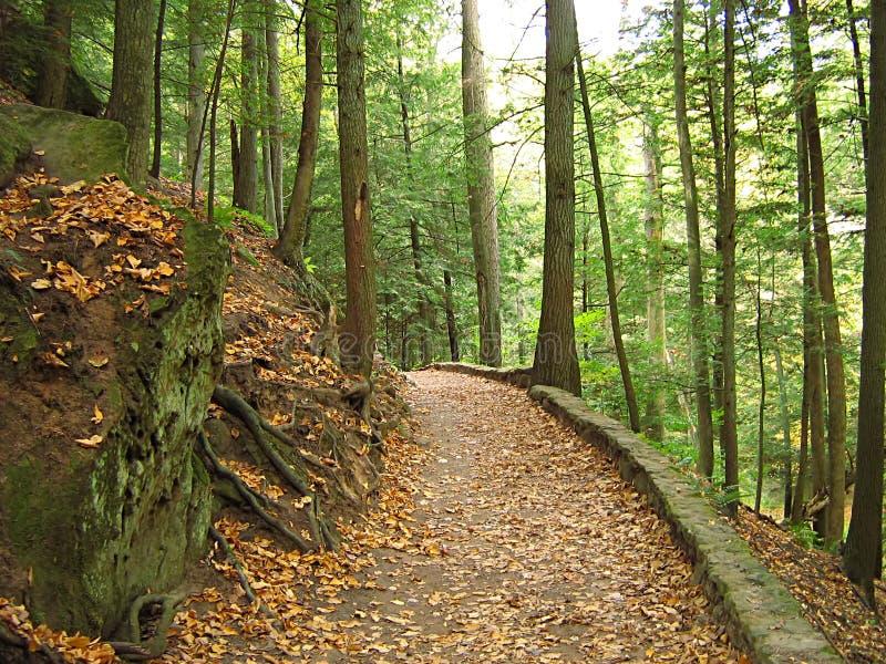 Montes Ohio de Hocking fotos de stock