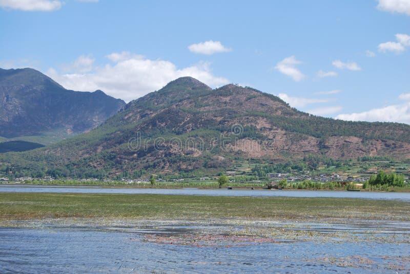 Montes Verdejantes E águas Verdes Imagens de Stock