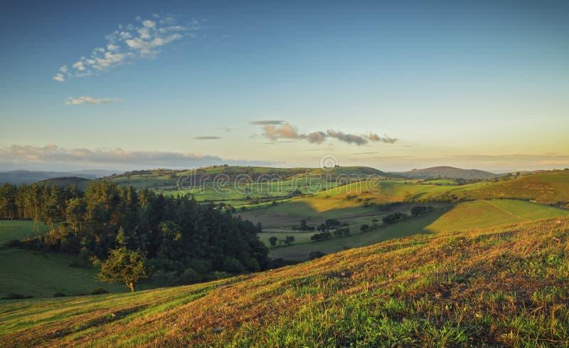 Montes verdes cênicos do campo britânico foto de stock
